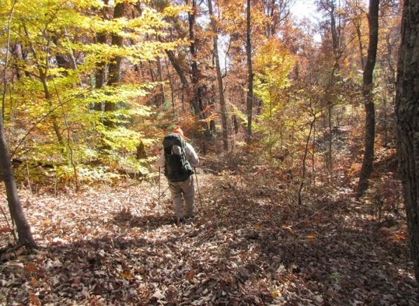 Fall is Best Seen From These 30 Walking & Hiking Trails in Southern Indiana