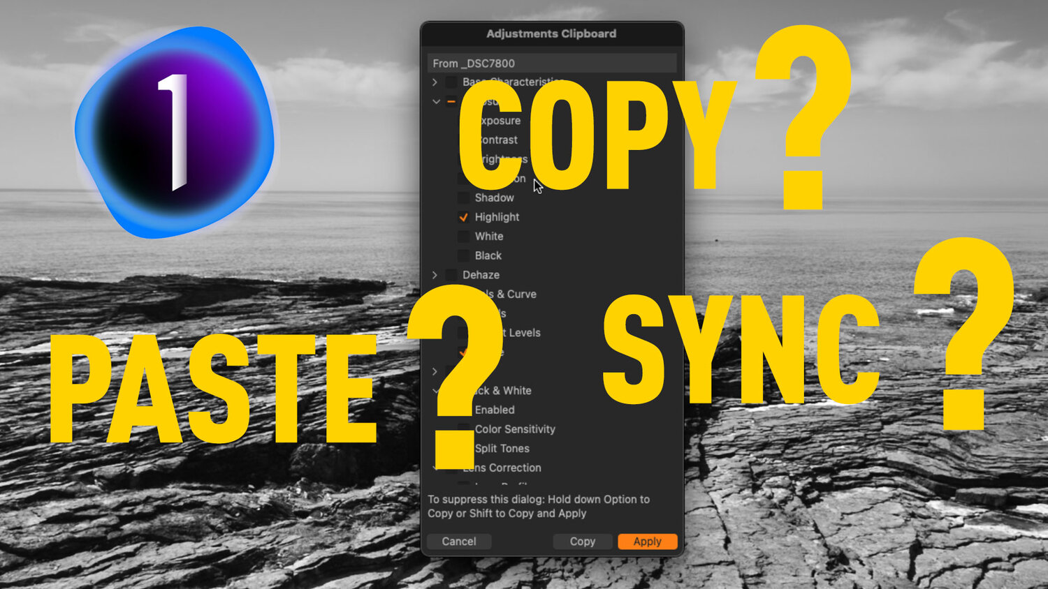 How to Sync Settings in Capture One (How to use the Copy and Apply Adjustments Tool)