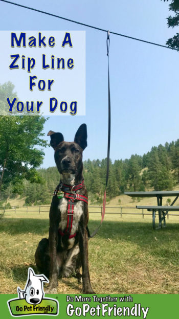 Making A Zip Line For Your Dog