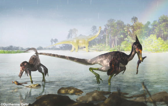 New Feathered Dinosaur Species Revealed