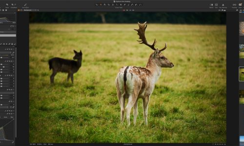 Save 10% on Capture One