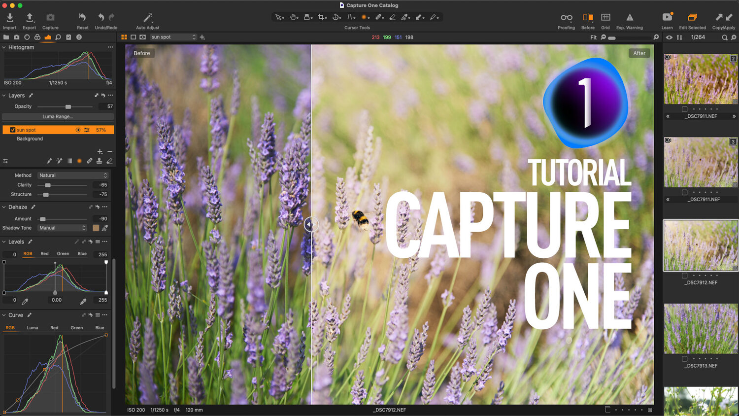Video: Use Negative Dehaze Creatively in Capture One to create a soft light effect