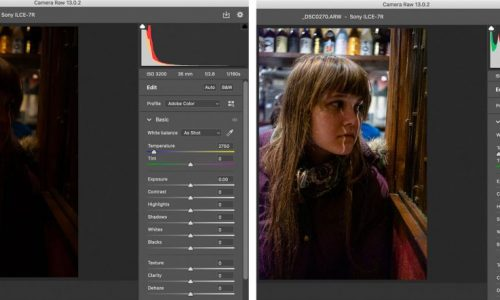 What are Raw Files? How to Open and Use Them