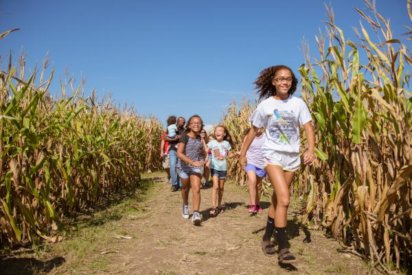 10 Unforgettable Activities For This Fall South of Indy