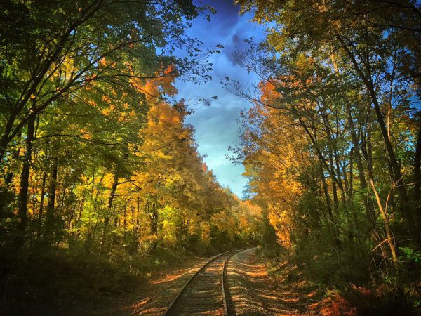 4 Ways to an Amazing Fall Train Ride Aboard The Nickel Plate Express