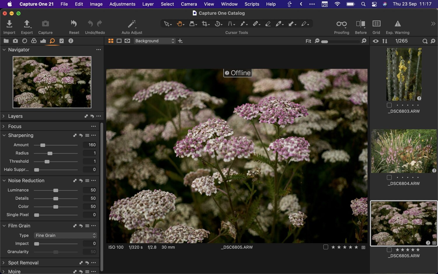 A Cool Capture One Feature You May Not Be Aware Of – Working With Offline Images
