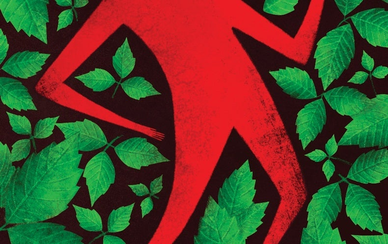 A Vaccine against Poison Ivy Misery Is in the Works as Scientists Also Explore New Treatment Paths