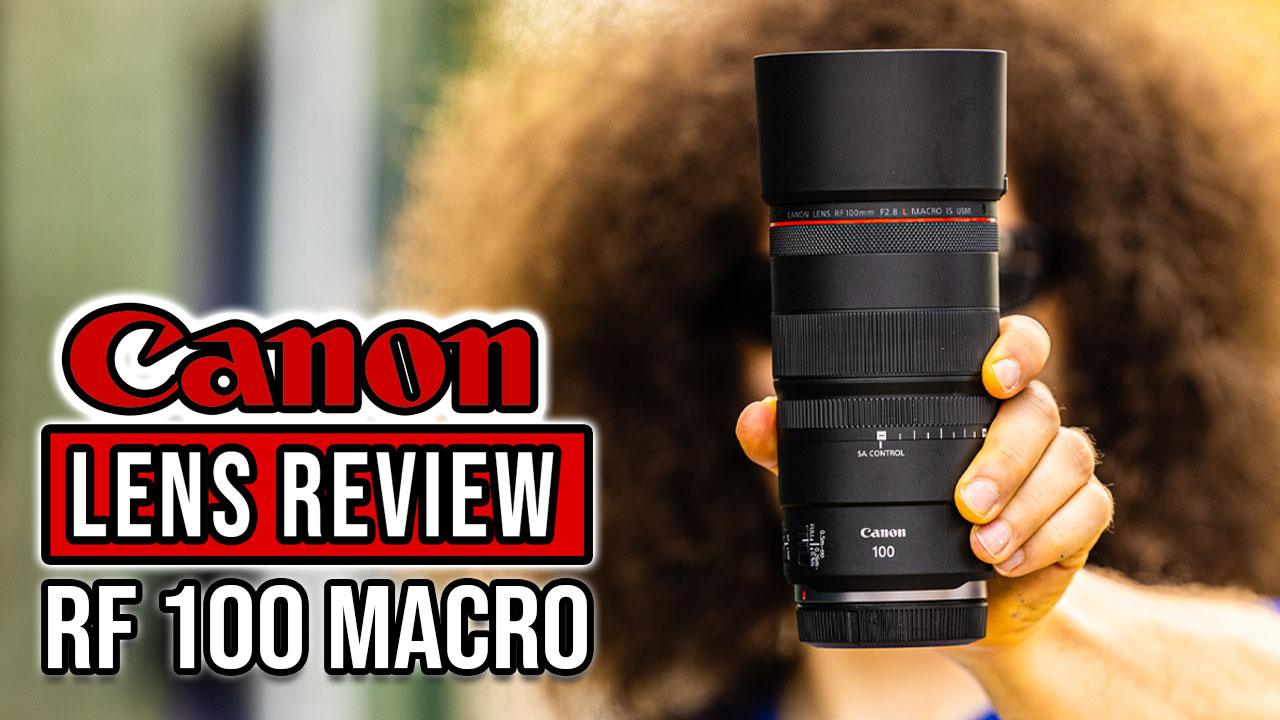 Canon RF 100mm f2.8 Macro Lens REVIEW