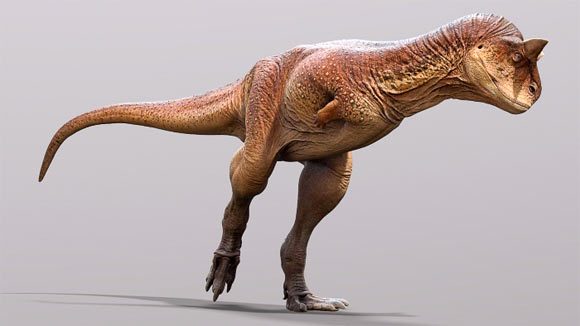 Carnotaurus Had Scaly Skin with No Feathers, Paleontologists Say