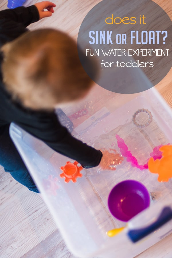 Does it Sink or Float Experiment for Toddlers