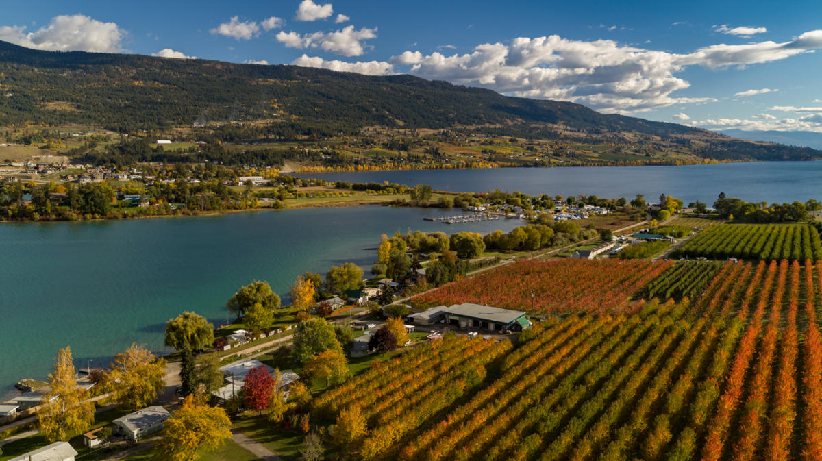 Explore Kelowna with a Wellness Focus this Fall