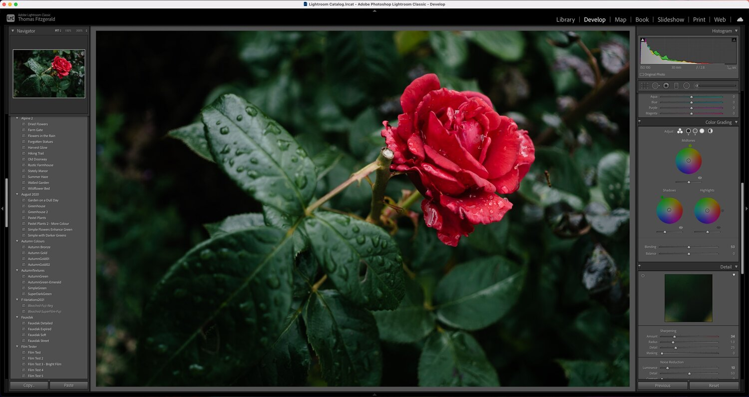 Going Green – How I got the deep greens on a rainy day photoshoot