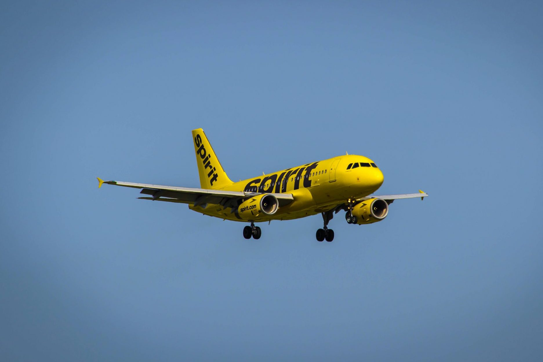 Hopper Partners With Spirit Airlines to Help It Sell More Extras