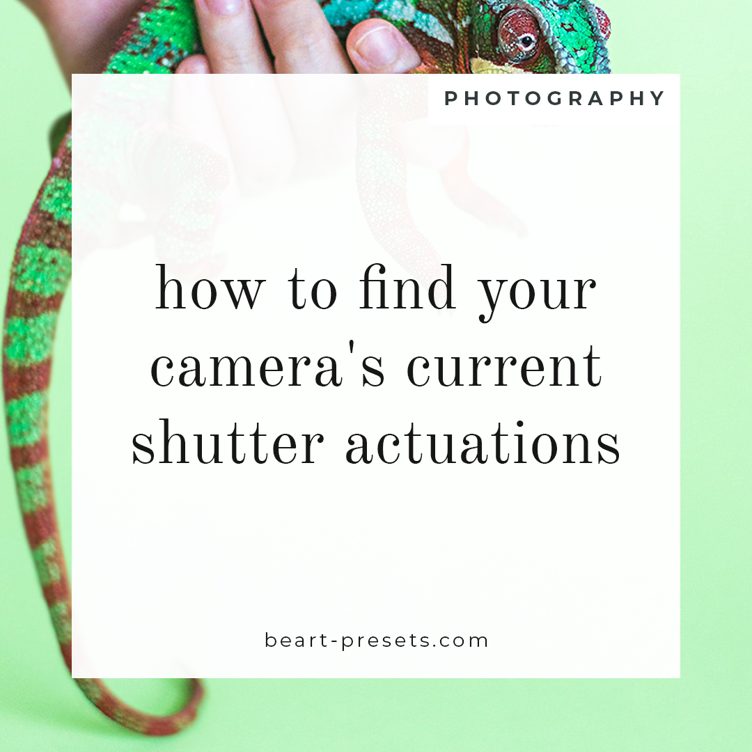 How to Find Your Camera's Current Shutter Actuations