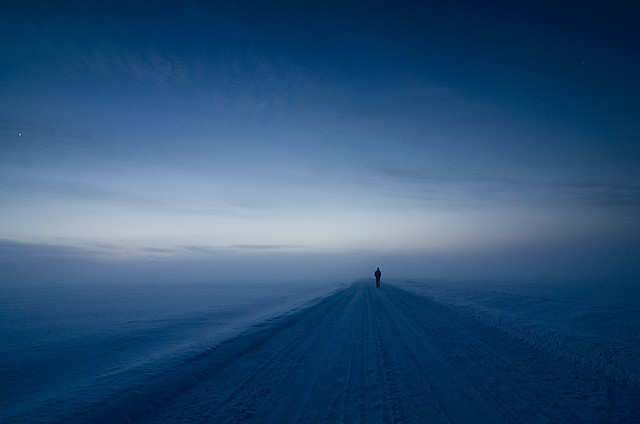 I Am Lonely And I Love It: Pictures Which Will Leave You Speechless