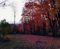 Resources for Teaching and Learning About Fall