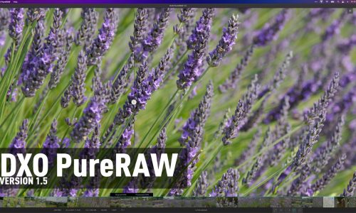 DxO PureRAW 1.5 Released – More Options, More Control, and More Cameras