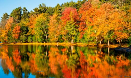 Five Tips For Photographing Fall Foliage